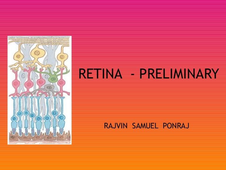 Retina preliminary