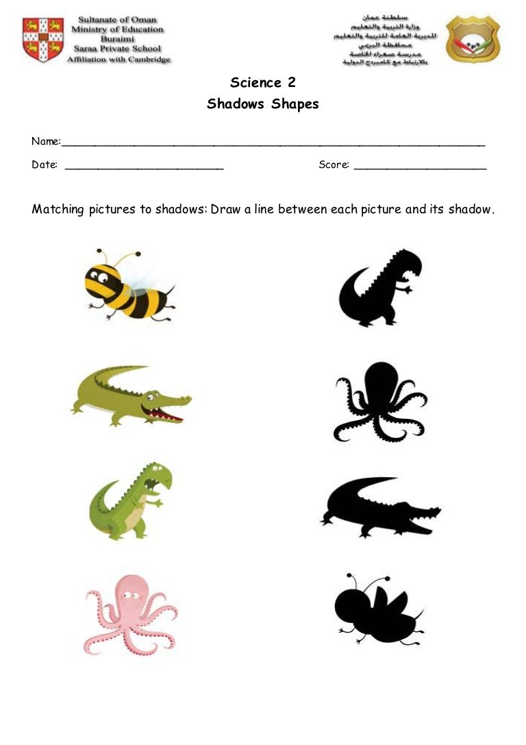 revision-makingshadows-1-170902174707-thumbnail-4 Clothes Worksheet Grade on 1 grade spelling, 5th grade worksheets, 1 grade flash cards, for first grade phonics worksheets, 1 grade crafts, 1 grade reading, 1 grade teachers, 7 grade worksheets, 4 grade worksheets, 1 grade poems, fall first grade addition worksheets, 1st grade grammar worksheets, 1 grade coloring pages, 2 grade worksheets, for 1st grade reading worksheets, 1 grade clip art, 1 grade math, 1 grade work, 1st grade reading comprehension worksheets, 1st grade writing worksheets,