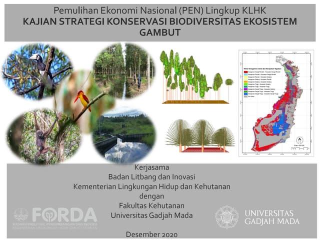Kajian strategi konservasi biodiversitas ekosistem gambut