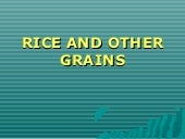 Rice and other grains