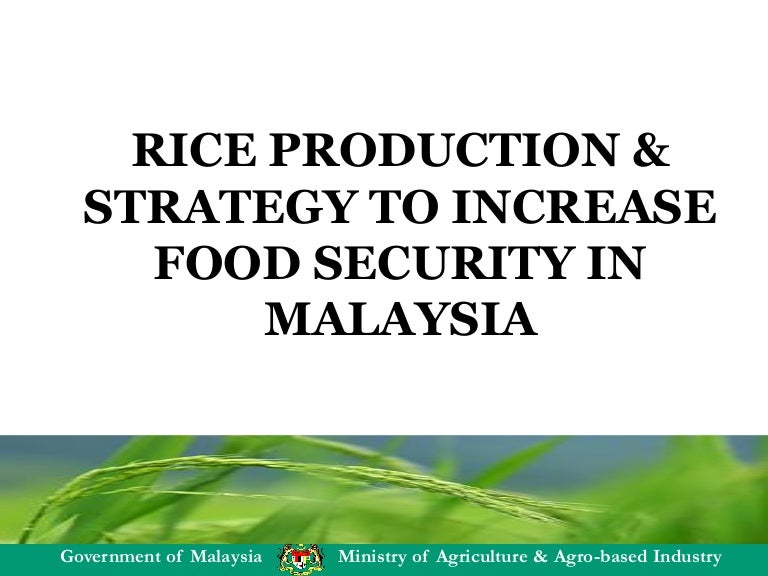 Rice Production And Strategy To Increase Food Security In Malaysia