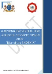 Rise of the phoenix vision 2030 Roland Hendricks