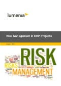 Risk Management in ERP Projects