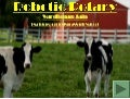 Robotic Rotary Dairies -  a brave new world where cows milk themselves by Vardhman Jain