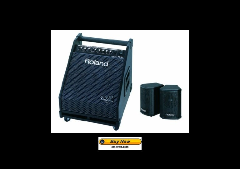 Roland pm 30 powered speaker cabinet black