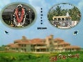 Role of rasa dravyas in madhumeha