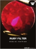 Ruby Filter by ACMAS Technologies Pvt Ltd.