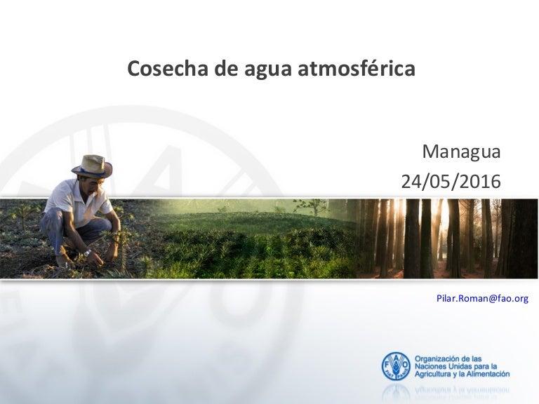 Metodologias De Captacion De Agua Atmosférica