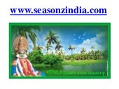 Kerala Tour Packages and Honeymoon Packages