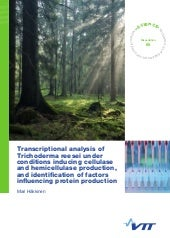 Transcriptional analysis of Trichoderma reesei under conditions inducing cellulase and hemicellulase production, and identification of factors influencing protein production. Mari Häkkinen. VTT Science 65