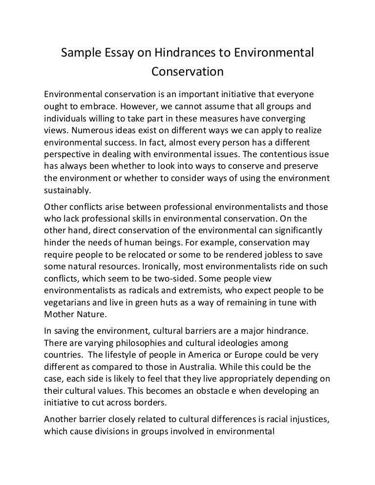 Essay On Environment Conservation  Healthy Lifestyle Essay also Help Developing A Business Plan  Business Plan Writers South Africa