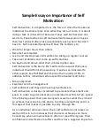 motivation assignment  sample essay on importance of self motivation