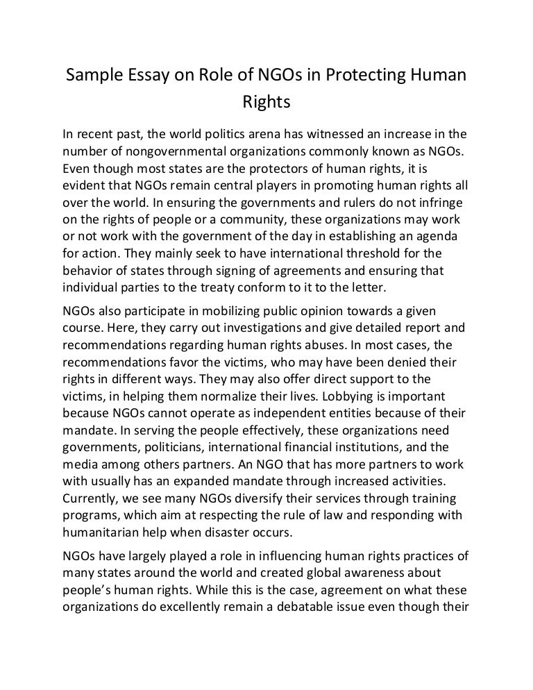 sample essay on role of ng os in protecting human rights