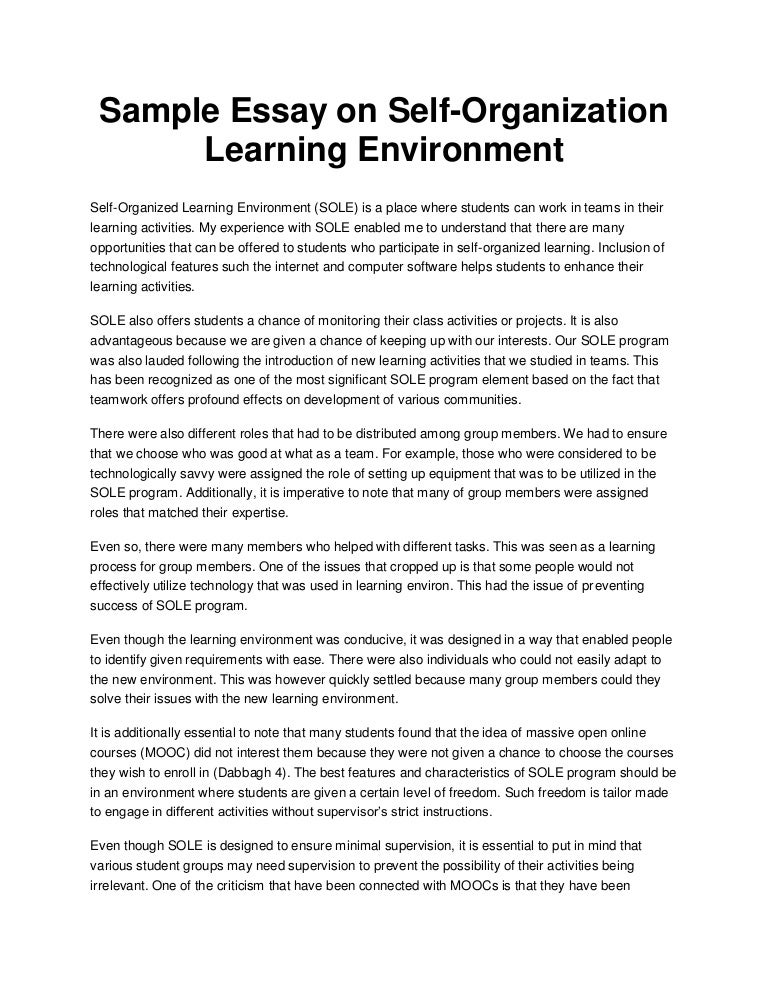 Sample Essay on Self-Organization Learning Environment