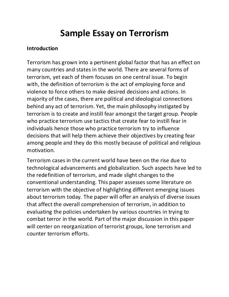 essay on terrorism in usa