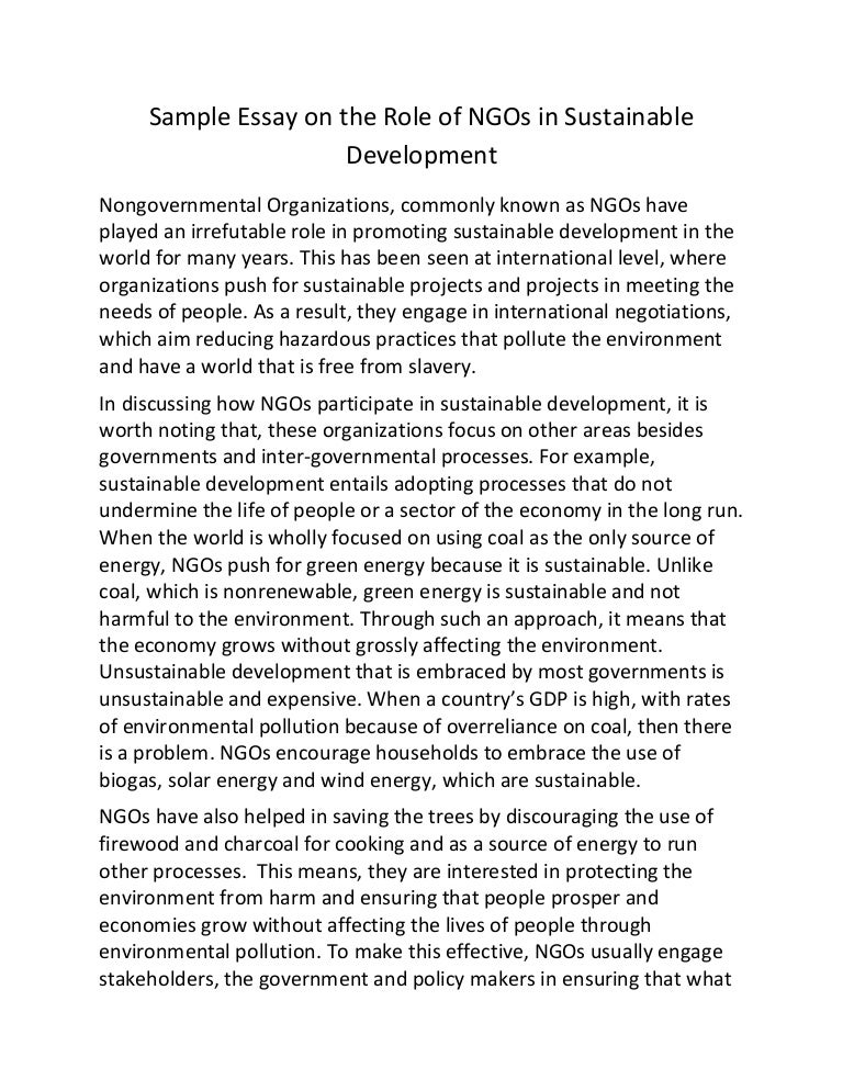 Sustainable development and environment essay