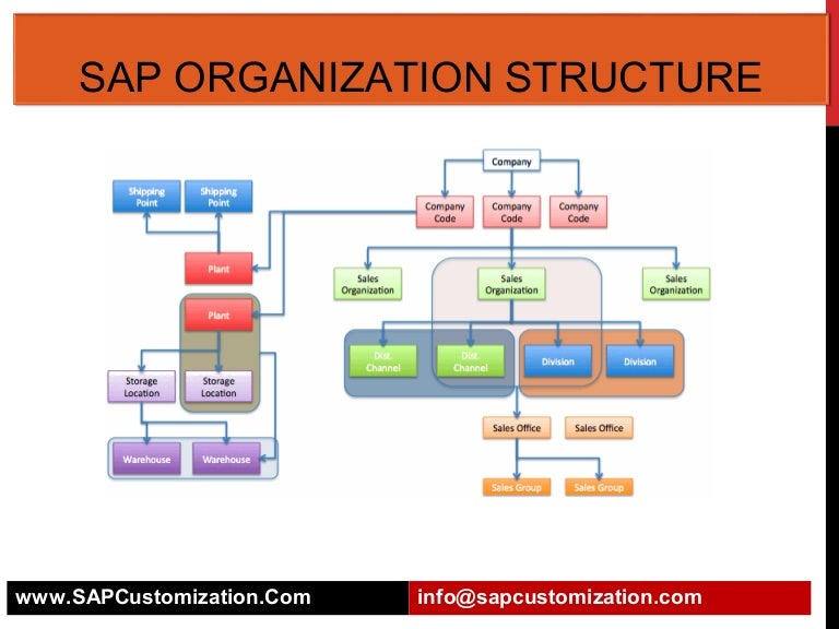 Sap Organization Structure