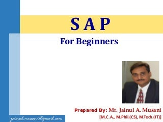 SAP for Beginners