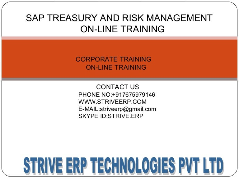Technology Management Image: Sap Treasury And Risk Management Online Training:strive