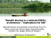 Benefit sharing in a national REDD+ architecture – implications for SIS