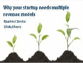 Why your startup needs multiple revenue models