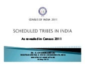 Scheduled Tribes in India: As revealed in Census 2011