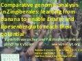 Banana, Ensete and Boesenbergia Genomics - Schwarzacher, Heslop-Harrison, Harikrishna