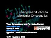 In situ hybridization methods and techniques course slides Pat Heslop-Harrison