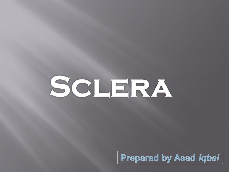 Anatomy Of Sclera