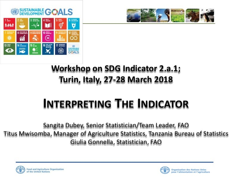 Workshop on SDG Indicator 2 a 1, Turin, Italy, March 2018 - Interpret…