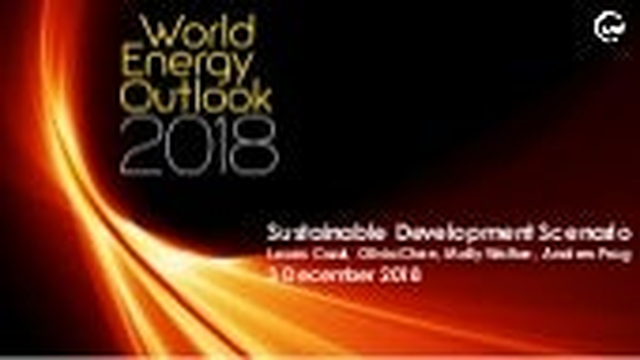Webinar on Sustainable Development Scenario