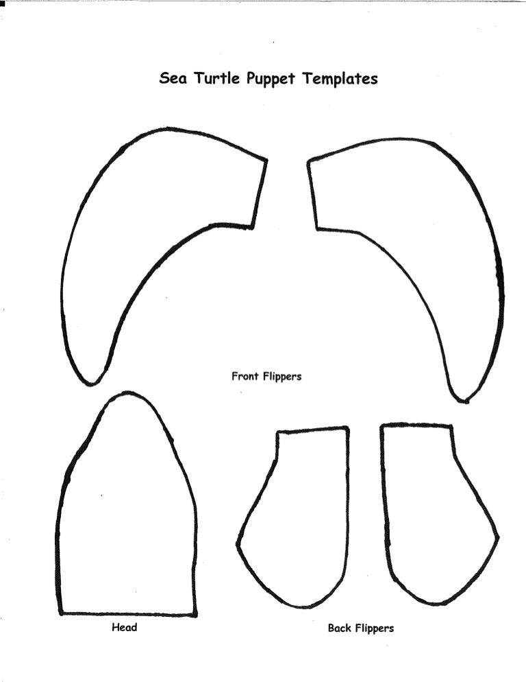 Sea Turtle Puppet Template