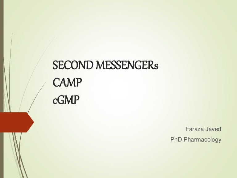 Second messengers cAMP and cGMP on phosphatidylinositol 3-kinase pathway, insulin pathway, jak 1 2 3 signaling pathway, pi 3-kinase pathway, adenylate cyclase pathway, il-6 signaling pathway, thyroid pathway,