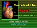 Secrets of The Heart Between Science and Belief