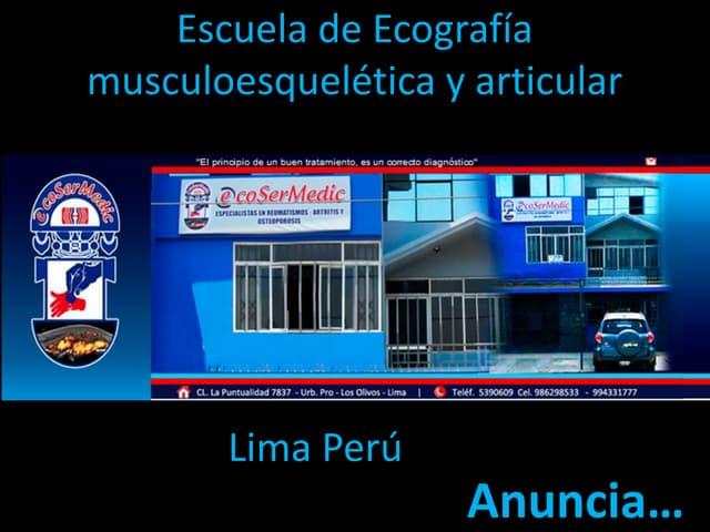 NUEVA MODALIDAD Semanal escuela de ecografía musculoesquelética y articular
