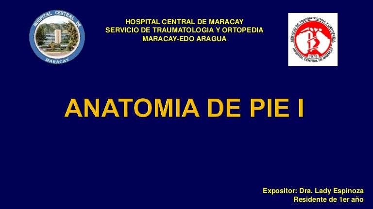 ANATOMIA DE PIE 1
