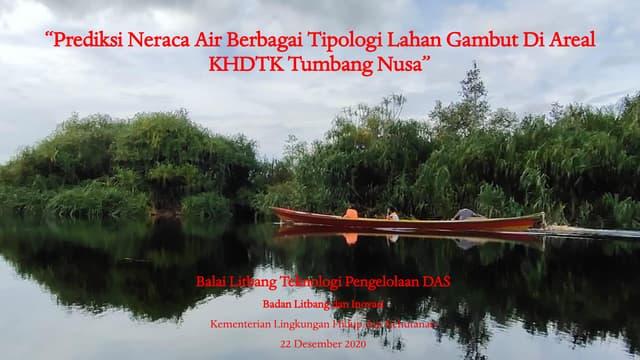 Prediksi neraca air berbagai topologi lahan gambut di areal KHDTK Tumbang Nusa
