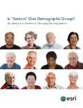 "Is ""Seniors"" One Demographic Group?"
