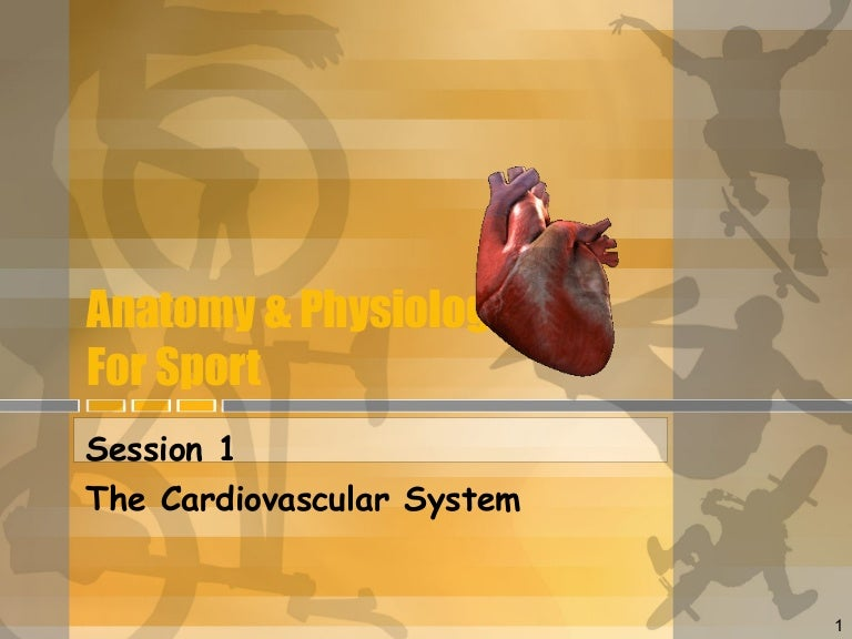 Session 1 & 2 (heart)