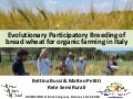 DIVERSIFOOD Final Congress - Session 3 - Evolutionary Participatory Breeding of bread wheat for organic farming in Italy - Bussi & Petitti