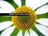Seth Godin   What Matters Now
