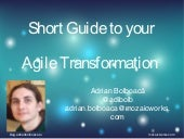 Short Guide to you Agile Transformation