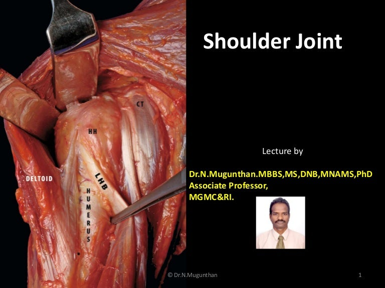 Shoulder joint pdf lecture notes by Dr.N.Mugunthan