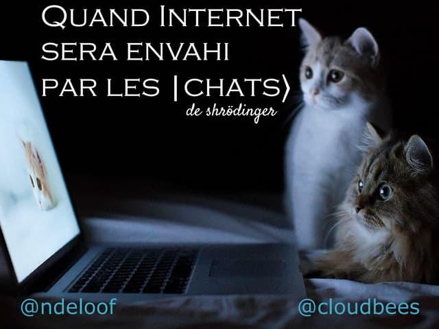 Quand Internet sera gouvernée par les  chats> de Shrödinger