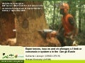 Experiences, issues and challenges of timber concession systems in the Congo Basin