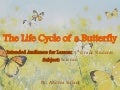 Siclari,andrea  life cycle of a butterfly