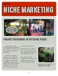 SocialIndexEngine Niche Marketing Websites