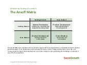 SieckGrowth: Ansoff Matrix