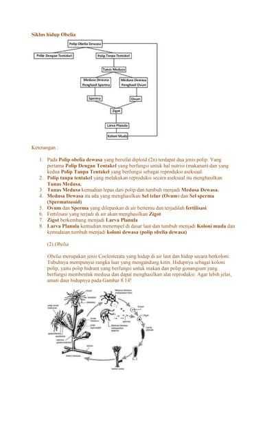 A trypanosoma gambiense egy parazita azaz)