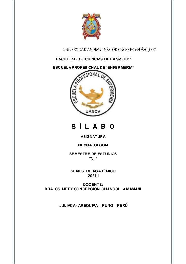 silaboneonatologia 210930183302 thumbnail 4